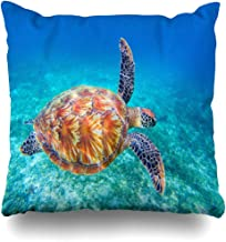 Throw Pillow Cover Sea Blue Ridley Turtle Swims Water Tortoise Olive Parks Green Ecosystem Philippines Marine Shell Home Pillow Case Square Size 18x18 Inches Zippered Decor Pillowcase