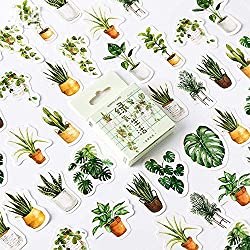 doraking plant stickers