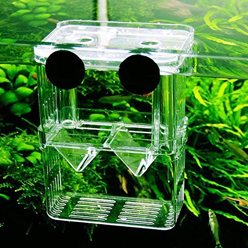 IUwnHceE Aquarium Kunststoff Fisch Zucht Box Shrimp Hatchery Fish Tank Incubator Box Schwimmdock Isolation Hatchery Schwimmende Fische Aquarium Hatchery Breeding (11 × 7 × 7 cm)