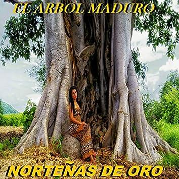 El Arbol Maduro