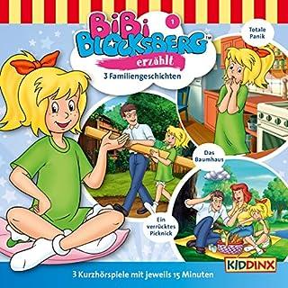 3 Familiengeschichten (Bibi Blocksberg erzählt 1) Titelbild