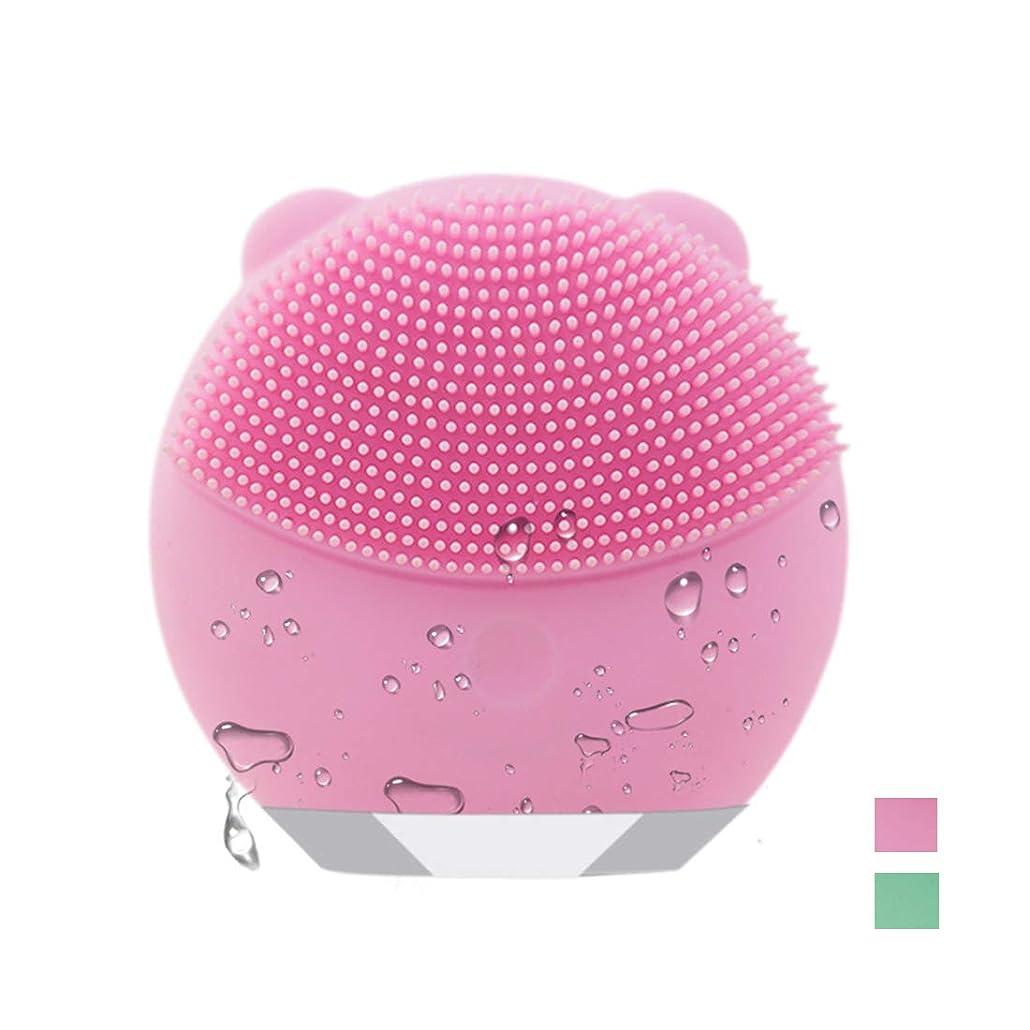 フラップ第返還電動 洗顔ブラシ 音波洗顔 ボデイーブラシ 毛穴ケア 美顔器 クレンジング フェイスブラシ USB充電 防水式 洗顔器 3種の振動モード (ピンク)