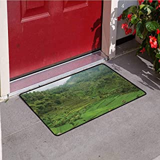 RelaxBear Balinese Universal Door mat Terraced Rice Paddies in Hillside Tropical Valley Asian Farming Life Agriculture Theme Door mat Floor Decoration W29.5 x L39.4 Inch Green
