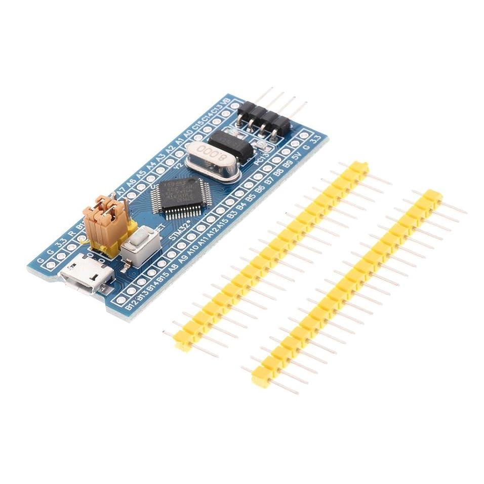 変なエミュレートする侵入するHomyl STM32F103C8T6 ARM STM32 最小 システム 開発 コア 学習ボード