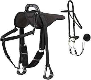 Colorado Saddlery The Western Natural Ride Package