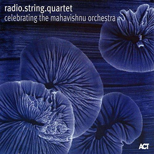 radio.string.quartet - Bernie Mallinger, Johannes Dickbauer, Cynthia Liao, Asja Valcic