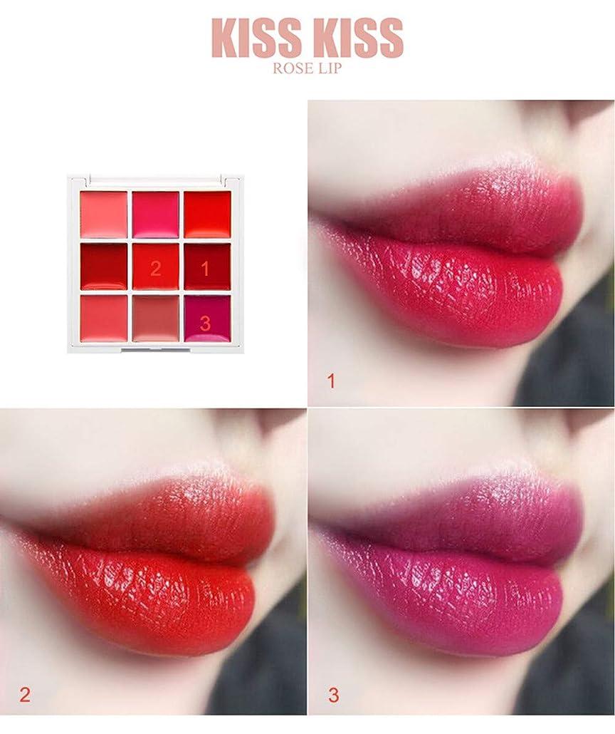 シマウマペインティング実証する美は口紅の保湿剤の唇の光沢の化粧品セットを構成します