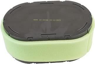 Stens 100-062 Air Filter Combo