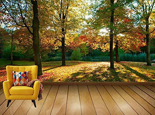 Avikalp Exclusive Awi7769 Tree Park Sunlight Long Shadows Autumn Color HD Wallpaper(548cm x 304cm)