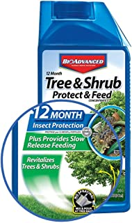 Bio Advanced 701810 12 Month Tree and Shrub Protect and Feed Concentrate, 32-Ounce