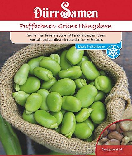 Puffbohnen Grüne Hangdown von Dürr-Samen