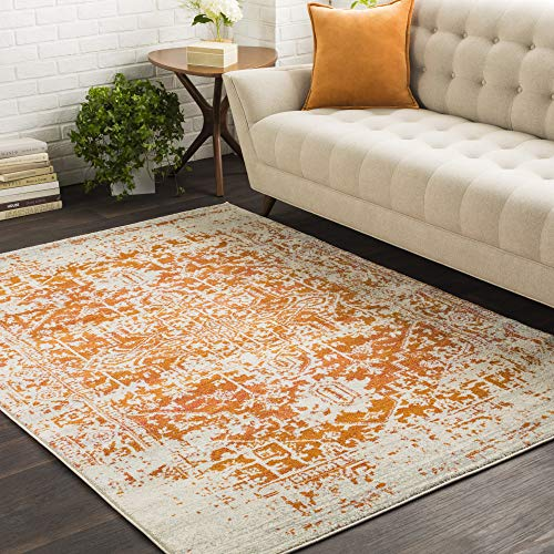 Janine Orange and Beige Updated Traditional Area Rug 5'3