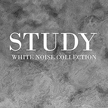 Study White Noise Collection