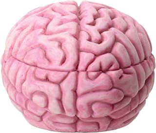 YTC 5.75 Inch Resin Zombie Brain Box Storage Container, Pink Colored