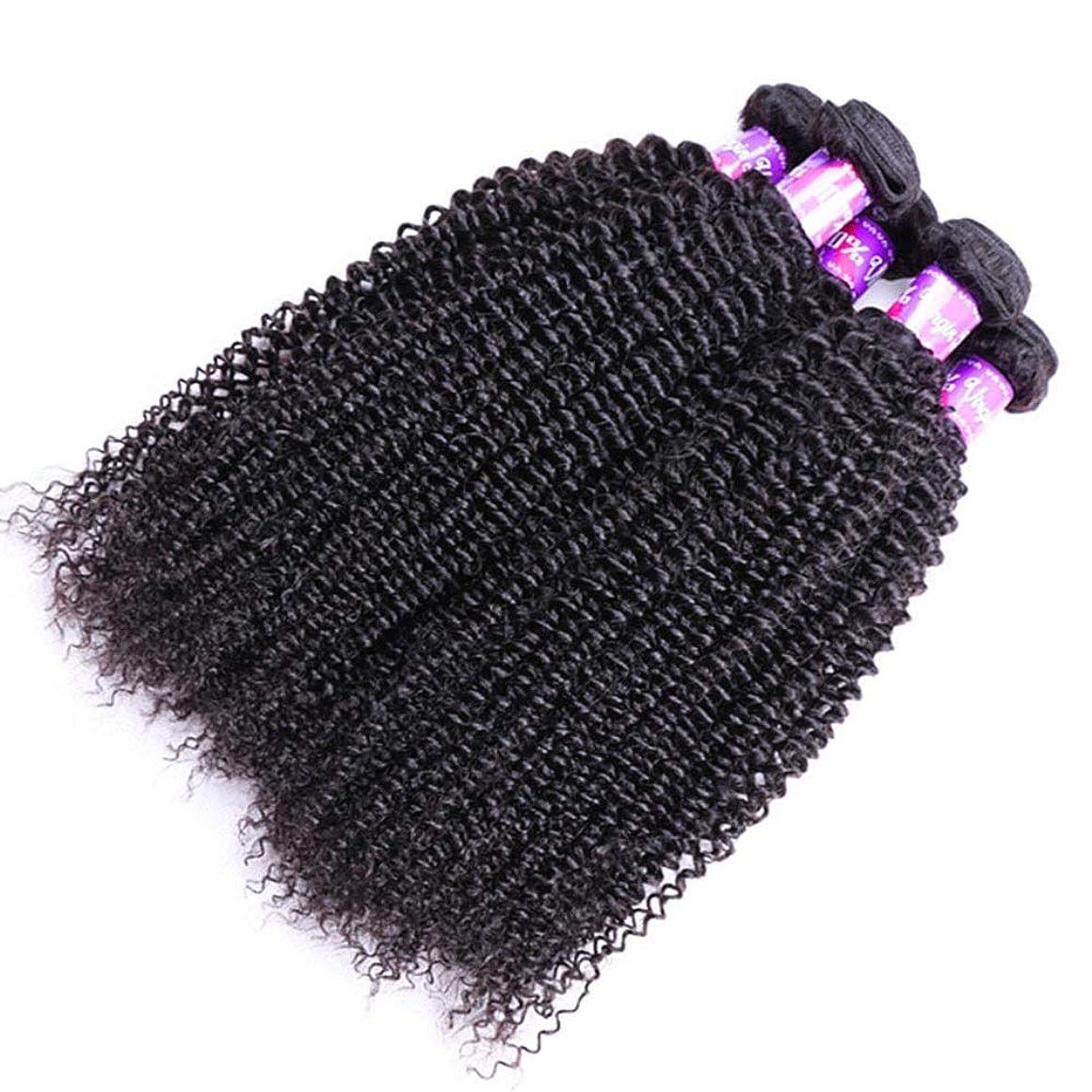 有効化不屈収容するYrattary ブラジルの変態巻き毛の束100%の未処理のRemy人間の毛髪の拡張子深い巻き毛の織り方自然な黒い色女性複合かつらレースかつらロールプレイングかつら (色 : 黒, サイズ : 16 inch)