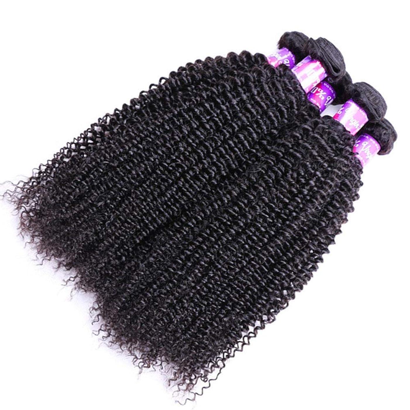 落ちたサワーおとなしいYrattary ブラジルの変態巻き毛の束100%の未処理のRemy人間の毛髪の拡張子深い巻き毛の織り方自然な黒い色女性複合かつらレースかつらロールプレイングかつら (色 : 黒, サイズ : 16 inch)