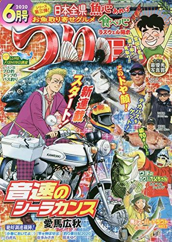 つりコミック 2020年 06 月号 [雑誌]