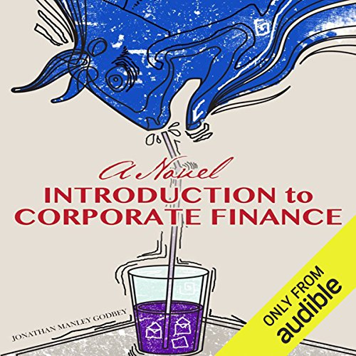 A Novel Introduction to Corporate Finance audiobook cover art