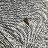 Carpets CnCnCn Protección del Suelo Una Vez Alfombra cepillada 5 Opciones de Grosor Exposición Decoración de ingeniería Escaleras de Oficina (Color : Thick 2mm, Size : 1.5x10m)