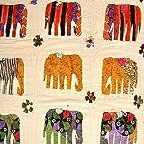 NANDNANDINI- Hermosa colcha Amarosi para cama o cama de matrimonio blanco de 90 pies x 60 pies de algodón Kantha/apliques hechos a mano en Jaipur India (1, Twin)