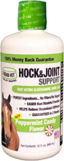 Liquid-Vet Hock & Joint Support for Equines | Horse Hip & Joint Supplement | Peppermint Candy Flavor