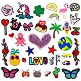 Pawliss Decorative Patches, Assorted Styles Embroidered Patches, Sew On/Iron On Patch Applique for Jackets Bags Jeans Hats Shoes, 36p