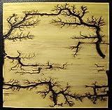 imagesco - Etched Lightning (TM) Captured in Wood. Branching High Voltage Electrical Discharge Creates One-of-a-Kind Lichtenberg Figure Artwork of Elegant Bonsai Style Zen Patterns Burned Into Wood.