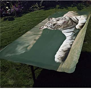 Tiger Polyester Fitted Tablecloth,Bengal Symbol Swimming White Beast with Black Sprites Large Cat Animals Having Fun Rectangular Elastic Edge Fitted Table Cover,Fits Rectangular Tables 48x24 Teal WHI