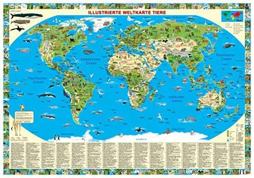 "Erlebniskarte ""Illustrierte Weltkarte Tiere"""