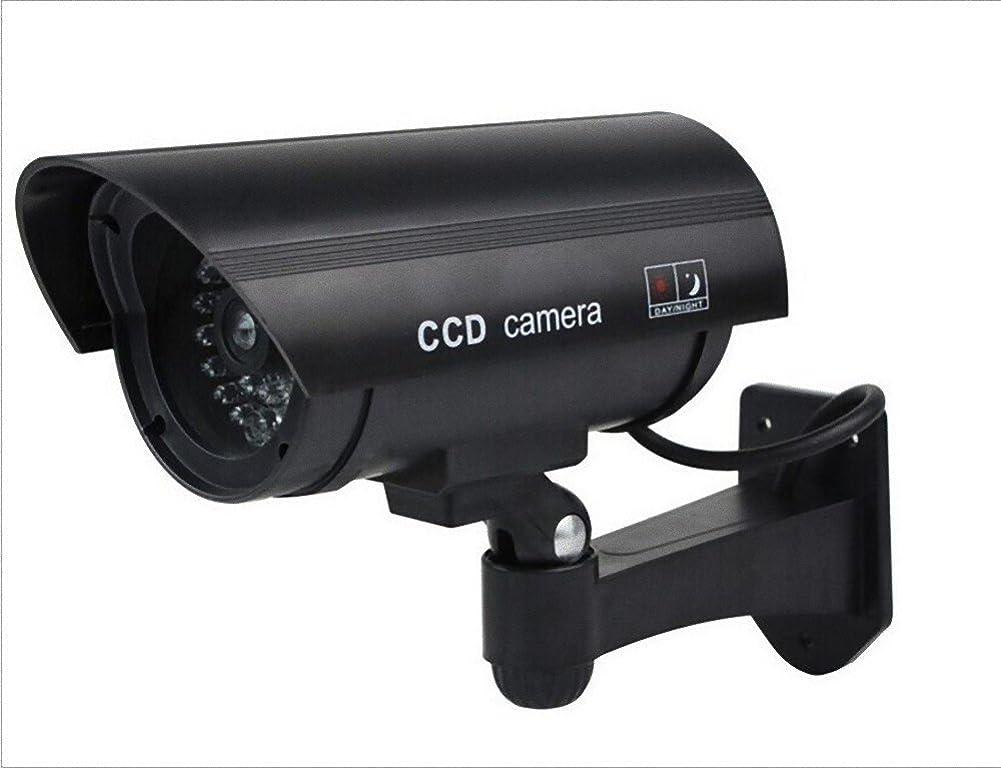 それぞれ過去民間人ImP フェイク 赤外線 防犯 監視 ダミー カメラ ブラック