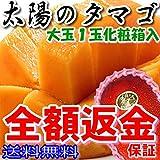 宮崎産 太陽のタマゴ 秀品 2L 1玉約350g化粧箱入 マンゴー