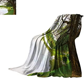 Luckyee Microfiber All Season Blanket Nature,Public National Park Forest Trees Lake Woodland Garden Growth Botany Landscape,Fern Green Brown Warm All Season Blanket for Bed or Couch 90