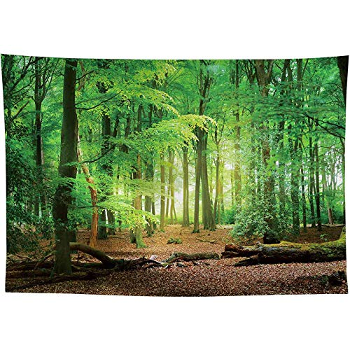 Allenjoy 8x6ft Spring Forest Photography Backdrop Sunlight Sunrise Nature Landscape Background for Children Family Camping Theme Happy Birthday Party Decor Banner Baby Shower Portrait Photo Booth Prop