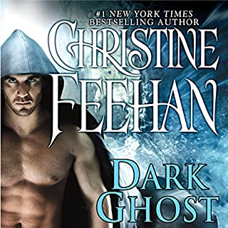 Dark Ghost audiobook cover art
