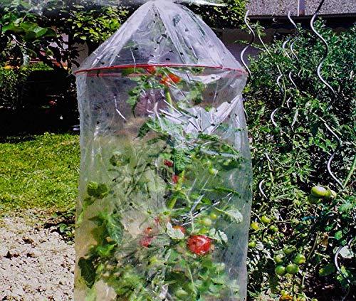 SIDCO Tomaten Reifehaube 3 x Tomatenhaube Reifefolie Schutzhaube Schutzfolie