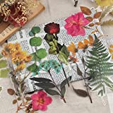 RisyPisy 48PCS Set de Pegatinas, Pegatinas Botánicas para Decoración de Flores y Plantas de Gran Tamaño, Pegatinas de Flores Translúcidas para Álbumes de Recortes, Diarios, Planificadores, Portátiles