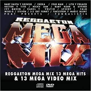 Reggaeton Mega Mix Video