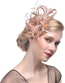 Wcysin Womens Feather Mesh Net Sinamay Fascinator Hat with Hair Clip Tea Party Derby (Rose Gold)