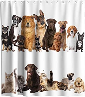 Funny Dog Cat Home Theme Fabric Shower Curtain Sets Bathroom Decor with Hooks Waterproof Washable 70 x 70 inches White and Brown