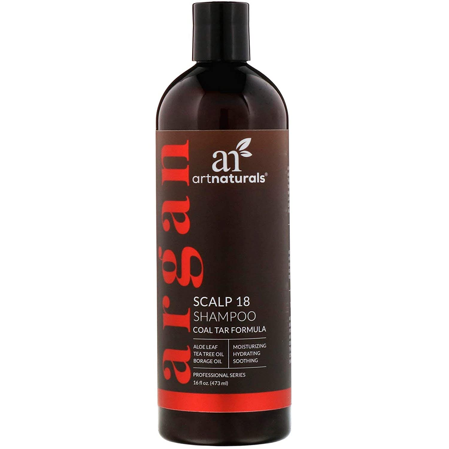 解読する大学院職人Artnaturals Argan Scalp 18 Shampoo, 16 Ounce