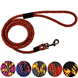Downtown Pet Supply DTPS, Durable Dog Rope Leash, 6' feet, Red, Mountain Climbing Rope Leash