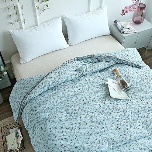 MMM Printemps et édredon de noyau de courtepointe plus épais de coton gardent la double literie chaude d'hiver (Couleur : #3)