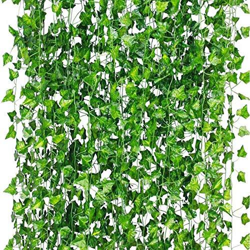 aanbieding lidl planten