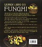 Zoom IMG-1 grande libro dei funghi una