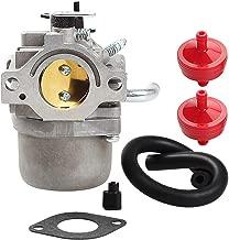 Savior 590399 Carburetor 394358 Fuel Filter for Briggs & Stratton 796077 Cub Cadet CC760 Walk Behind Mower 21A807 21A877 21A902 21A907 21A977 Engine