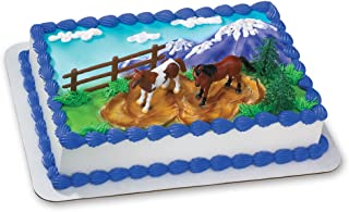 Best cake for horse lovers Reviews