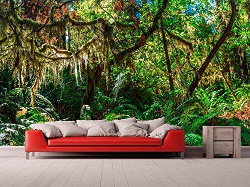 Oedim Fototapete Wallpaper Wand Urwald | Fototapete für Wände | Wandbild | Dekoratives Vinyl | Verschiedene Maße 100x70 cm | Dekor Esszimmer, Wohnzimmer, Zimmer