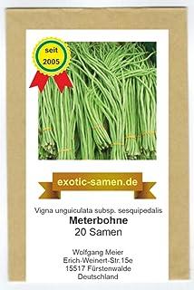 Meterbohne, Spargelbohne - 20 Samen
