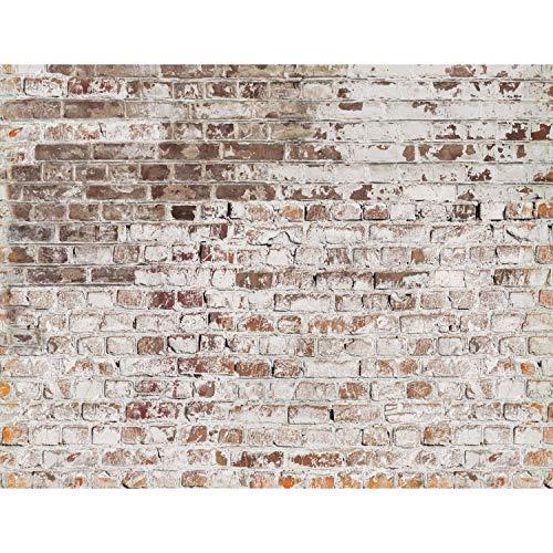 Fototapete Steinwand 396 x 280 cm Vlies Wand Tapete Wohnzimmer Schlafzimmer Büro Flur Dekoration Wandbilder XXL Moderne Wanddeko - 100% MADE IN GERMANY Runa Tapeten 9083012c