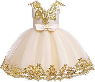 Luxury Princess Dress Children Dress Princess Dress Girls Sequined Veil Tutu Skirt Wedding Dress Flower Girl Dress Costumes Stage Catwalk ryq (Color : Champagne, Size : 150cm)